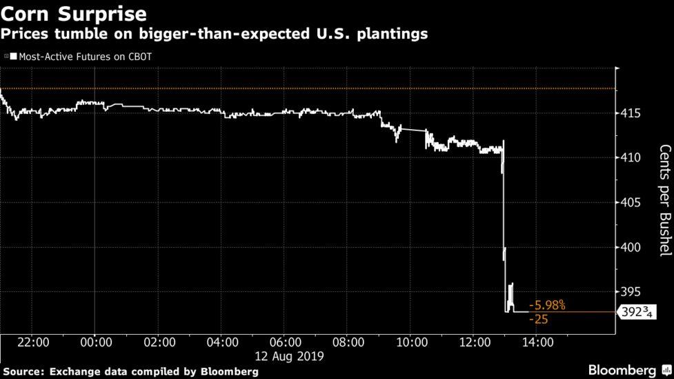 Corn Futures Post Worst Rout Since 2013 on U S  Acreage Surprise