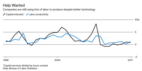 Automation Actually Creates More Jobs, at Least in the Beginning