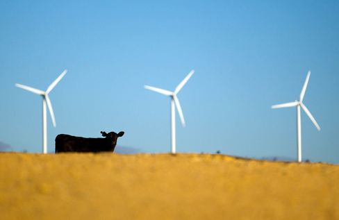 Operations At Capital Wind Farm