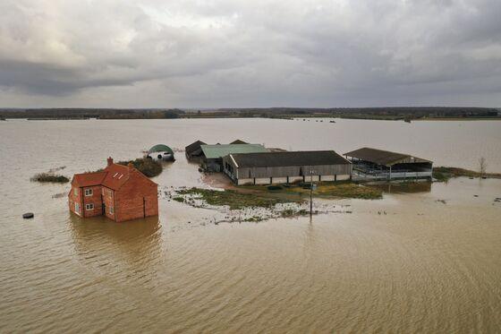 Coastal Damage Could Cost U.K. Economy Billions, WWF Says