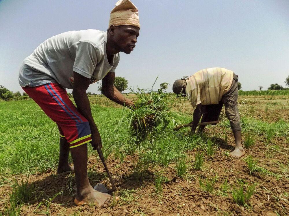 Nigerian Senate Approves 67% Increase of Minimum Wage