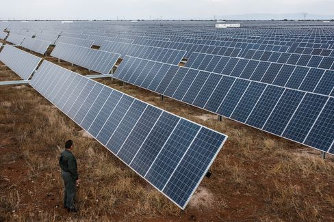 A visitor inspects photovoltaic panels operating in a solar park.