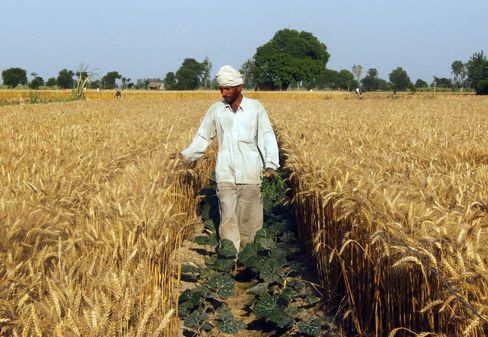 India Bets on Rains to Cool Inflation