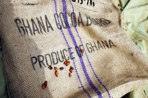 Ghana Plans Cocoa Irrigation as Poor Rainfall Curbs Output