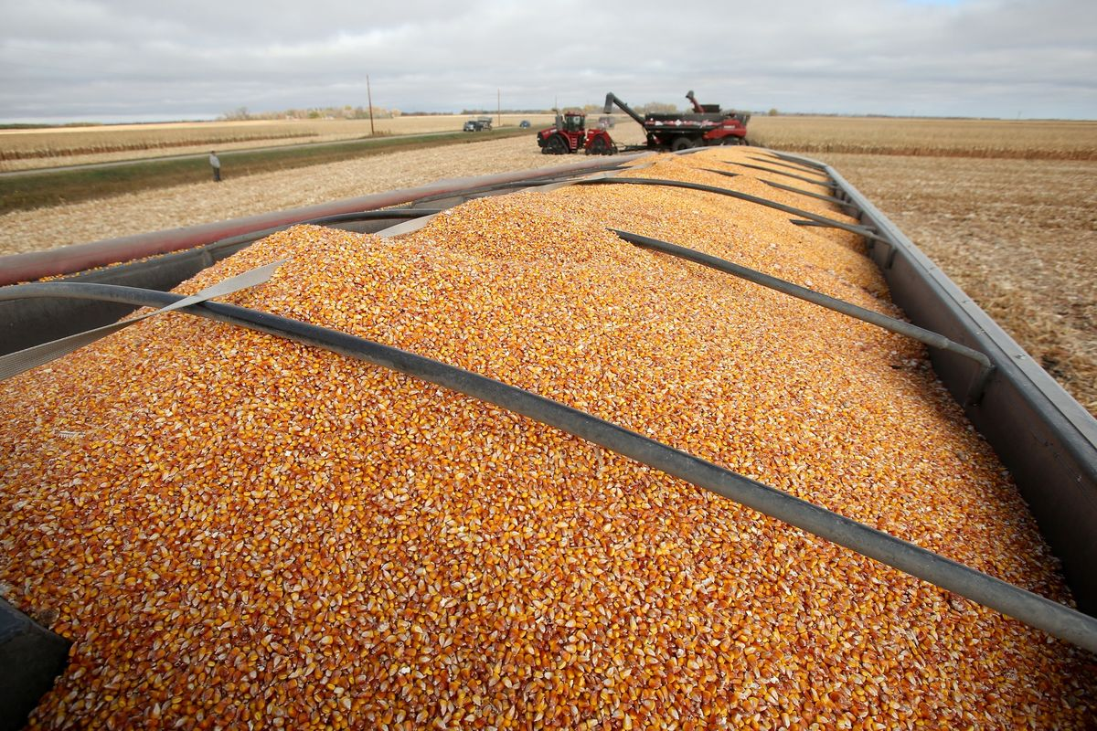 Farmers Edge Jumps 17.5% in Trading Debut After Canadian IPO