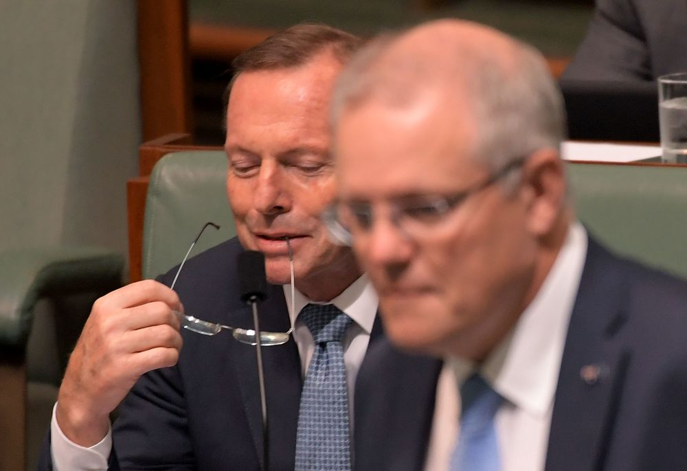 Junkyard Dog Demise Paves Way for Australia Policy Collaboration