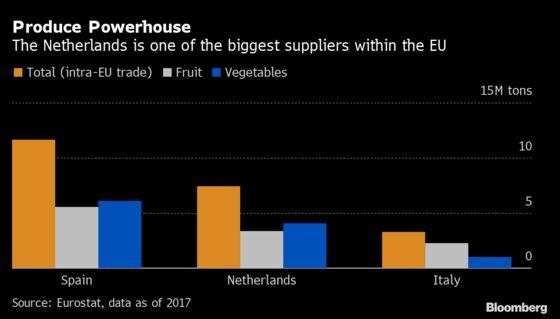 Gas Crisis Hits Food as Giant Dutch Greenhouses Go Dark