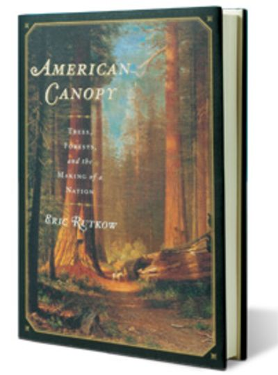 American Canopy Trees Forests and the Making of a Nation By Eric Rutkow  sc 1 st  Bloomberg & Book Review: u0027American Canopyu0027 by Eric Rutkow - Bloomberg