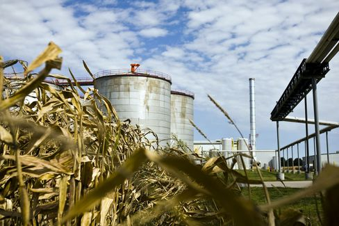 Ethanol Eats More Corn Than Cows as Herds Drop