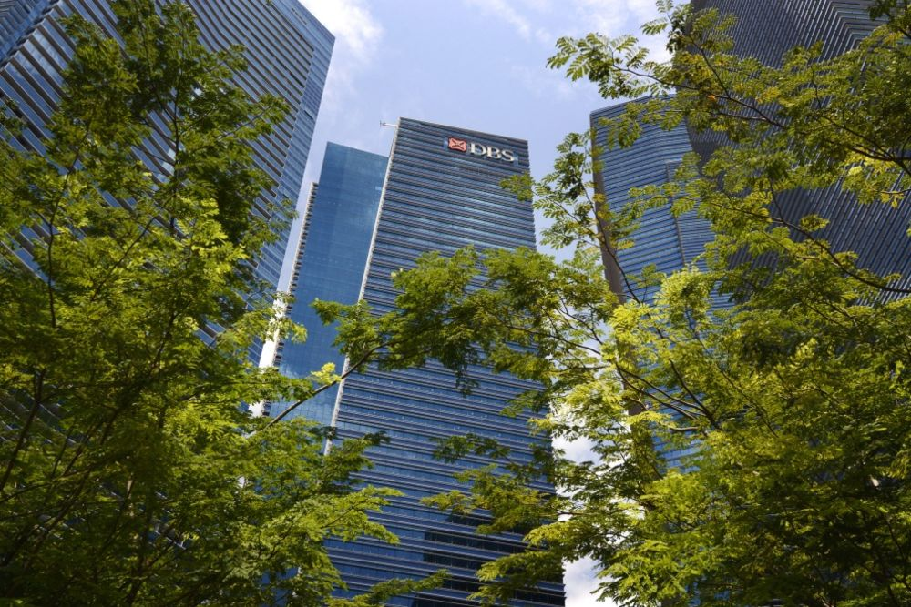 Here Comes DBS's Muddle-Through Year