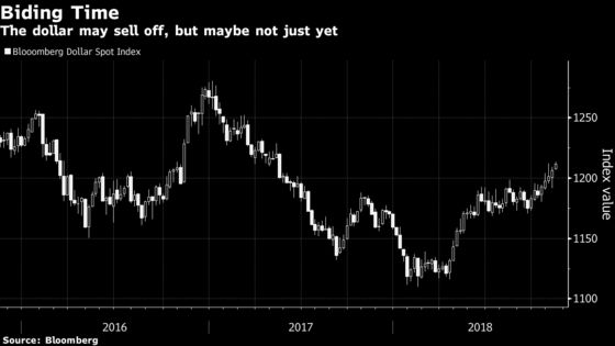 Even Dollar Bears Wary of Betting Against Greenback Just Yet