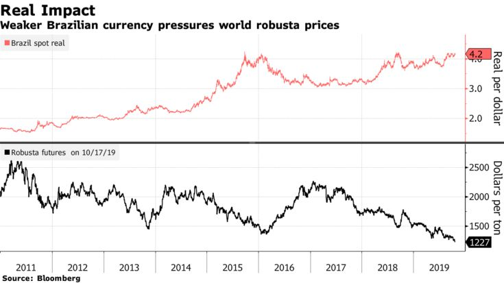 Weaker Brazilian currency pressures world robusta prices