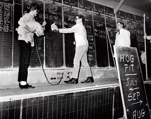 Live Hog Opening Contract, Feb. 28, 1966, Chicago