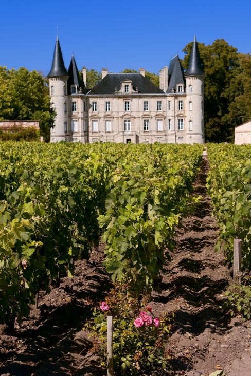In prestigious appellations like Pauillac (home to Chateau Lafite-Rothschild) vineyards cost up to 3 million euros a hectare.