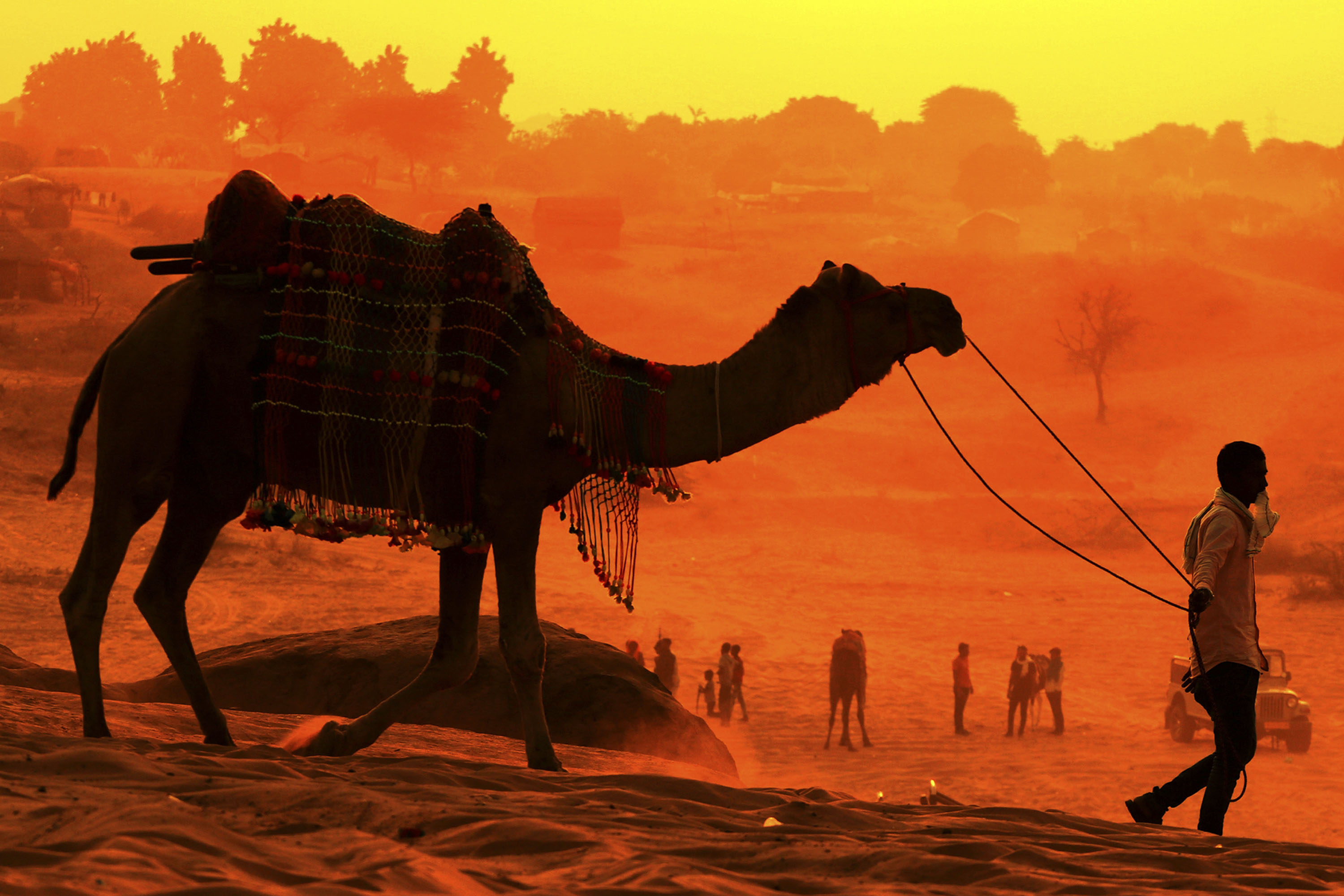 A man walks with his camel at the desert of Pushkar, in the Indian state of Rajasthan on 29 October 2020.