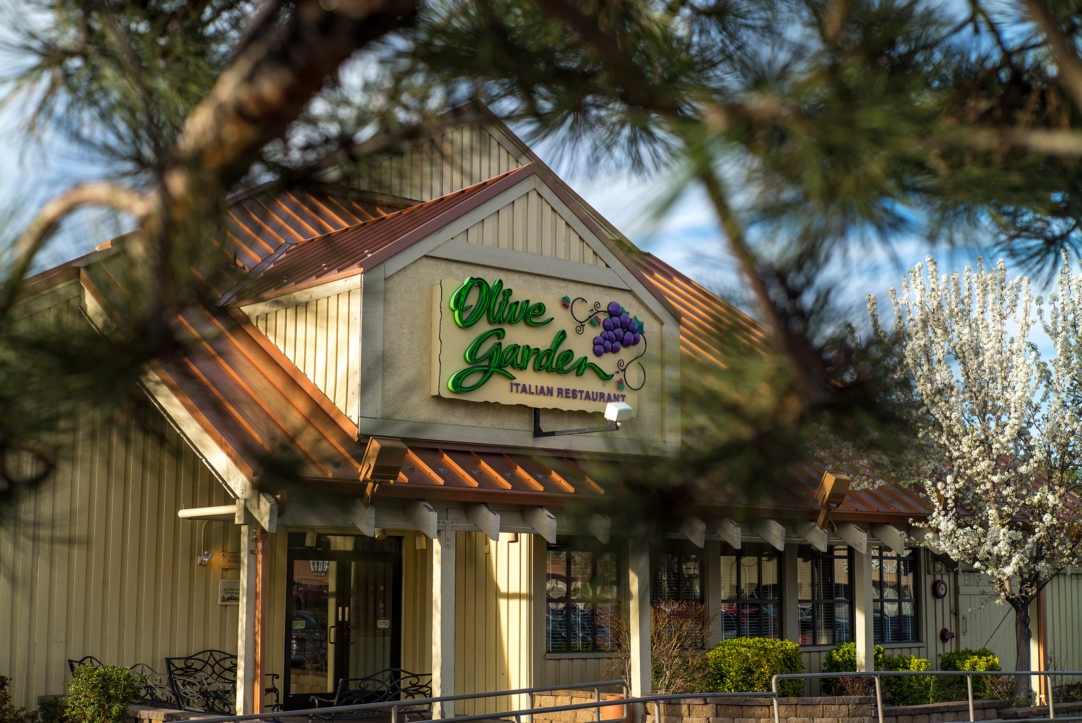 olive gardens latest cost cutting plan clean carpet less often bloomberg - Olive Garden Reno