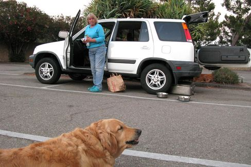 Living in Your Car: No Longer Just for Bums