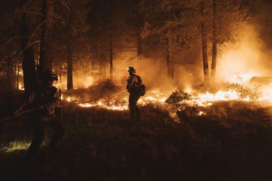 California's Mounting Crises May Be Newsom's Recall Salvation