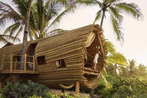 The first of seven treehouse suites at Playa Viva, in Mexico.