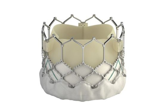 Heart Replacement Valves From Edwards and Medtronic Beat Surgery
