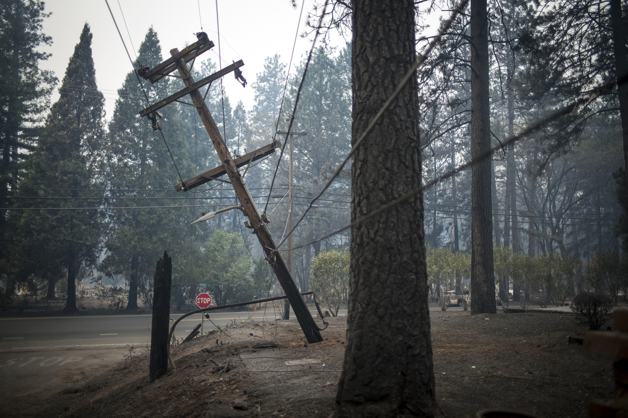 PG&E Plunges After Draining Credit Facilities Amid Fire Costs