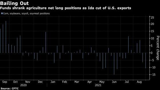 Funds Flee Bullish Crop Bets as Hurricane Ida Disrupts Exports