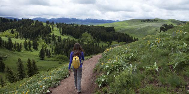 Fastest-growing city in Montana: Bozeman