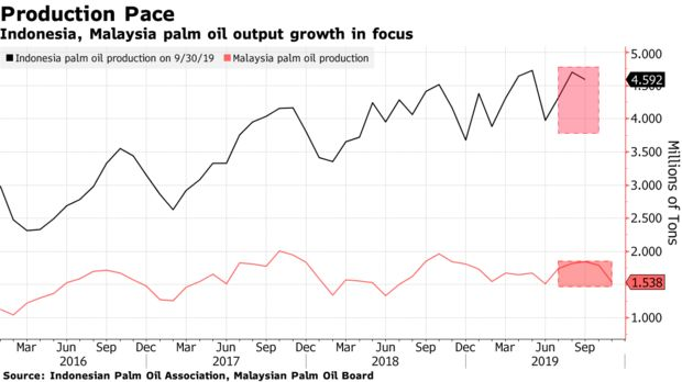 Indonesia, Malaysia palm oil output growth in focus