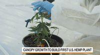 relates to Canopy Growth CEO on Plans to Build First U.S. Hemp Plant