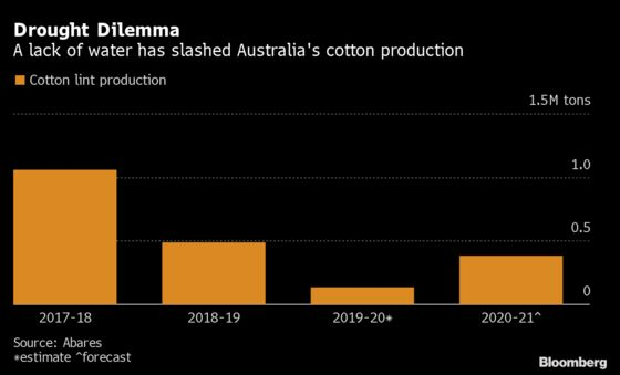 Cotton Growers in Australia Whacked Again as Chinese Buyer Shuts