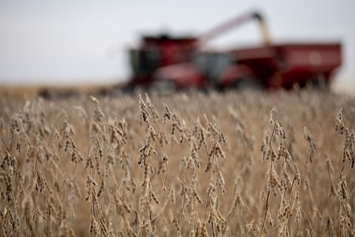 U.S. Agricultural Trade Surplus Shrinks to Smallest Since 2006