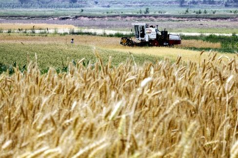 China???s Ag Minister Says He Eats Genetically Modified Food