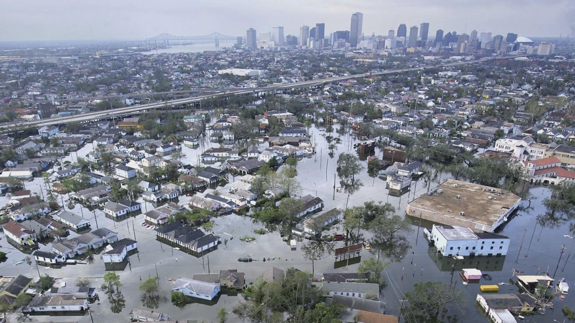 современные произведения ураган катрина фото показалась улице без