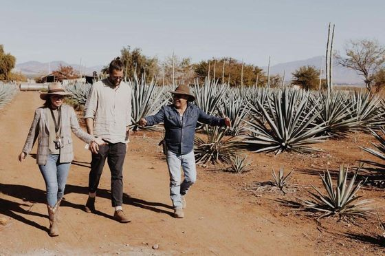 Fighting Environmental Degradation, One Bottle of Fancy Mezcal at a Time