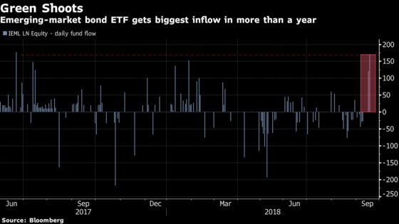 Is the Emerging Markets Sell-Off Over? Fund Sees Biggest Inflow In a Year
