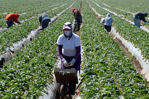 Small Business Wants Immigration Reform for More Than Cheap Labor