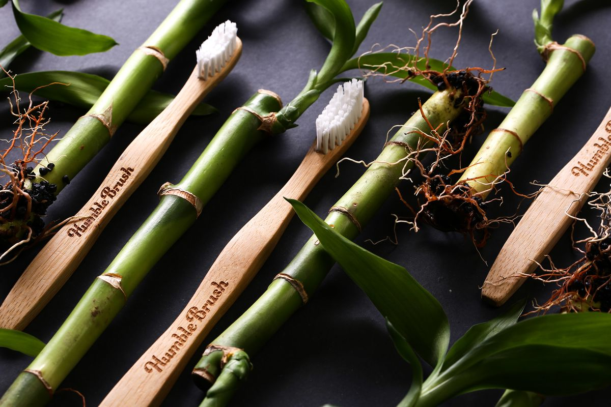 bloomberg.com - Love Liman - Swedish Bamboo Toothbrush Shows Allure of Sustainable Investing