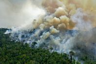 relates to Brazilian Amazon's Tipping Point May Already Be Here