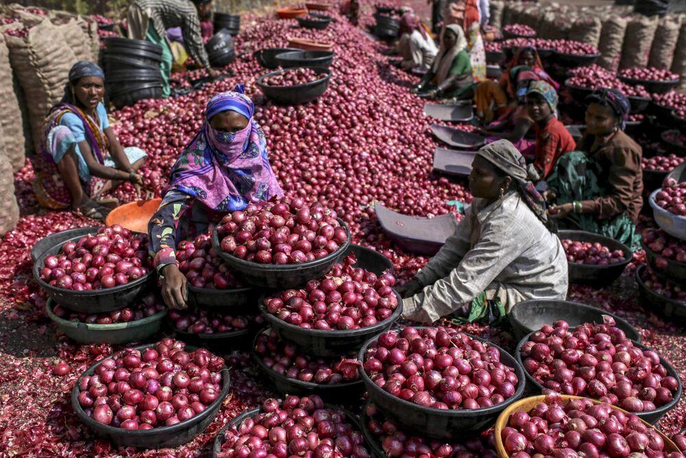 Modi Increases Cash Support Program for Farmers to $12.5 Billion