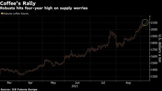 Robusta Coffee Extends Rally to Four-Year High on Crop Woes