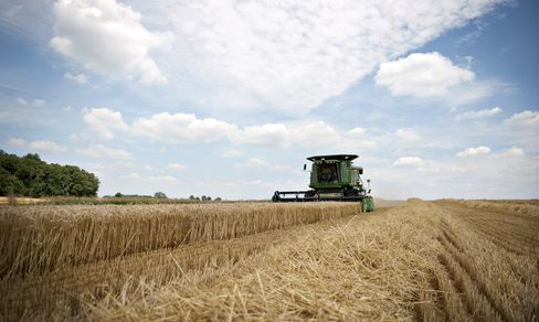 Farm Aid Shrinks as U.S. Debt Deal Means No Budweiser Barley