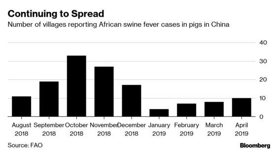 Slaughterhouse Test Blitz Ordered to Stem China's Pig Contagion