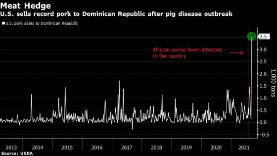 U.S. Pork Exports Spike With Swine Fever in Dominican Republic