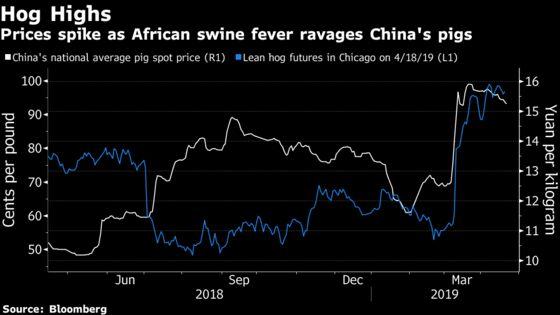 Farming Veteran Warns China's Pig Crisis Only Getting Worse