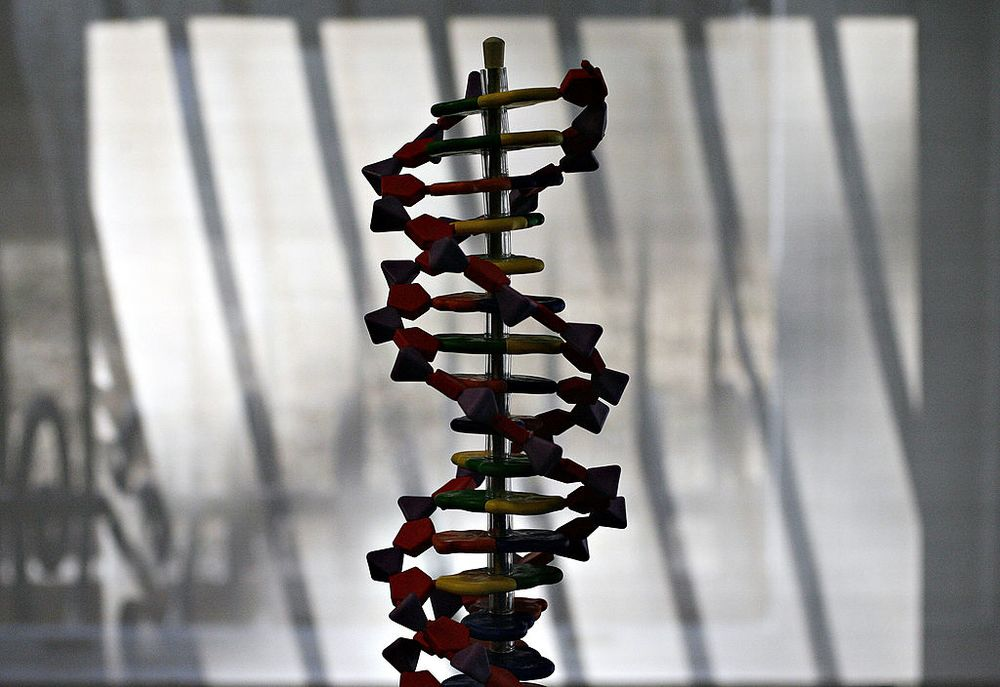 Corporations Shouldn't Be Able to Patent Your DNA