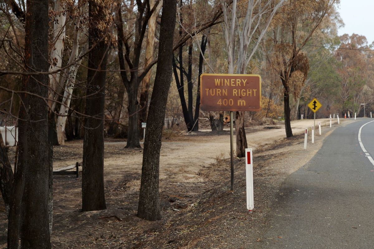 Wildfire Smoke Sparks Worries for Australian Wine Growers