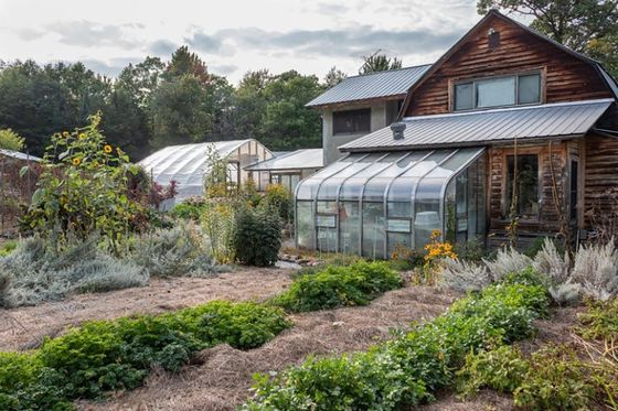 Ditching Dorms for the Farm, Students Take Pandemic Detours