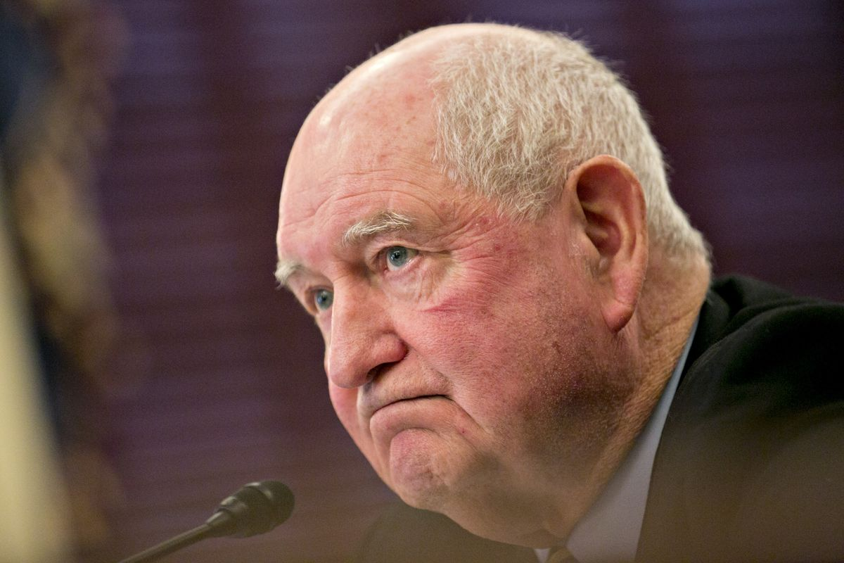 Trump Agriculture Chief Sees China Spared New Dec. 15 Duties