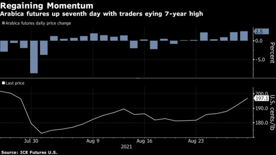 Coffee Surges as Hurricane Snags and Brazil Heat Add to Worries
