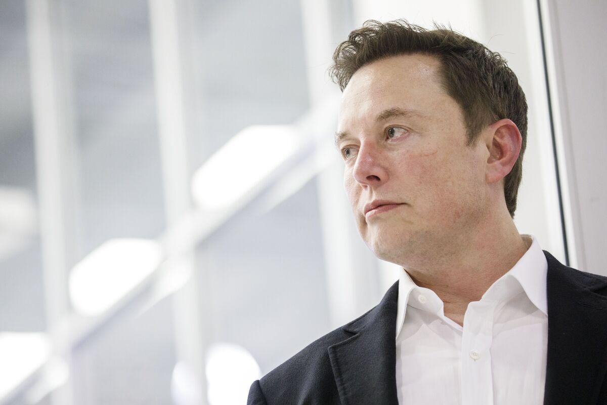 Musk Takes On German Ecology Critics of Tesla Plant Near Berlin